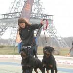 Black-Rott Erik & Black-Rott Franco Slobozia 03.04.11