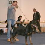Black-Rott Gino Klub Graz 2012