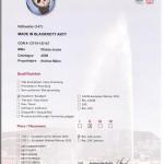 Res CAC Jeune Arty EDS 2013