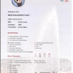 Res-CAC-Jeune-Arty-EDS-2013